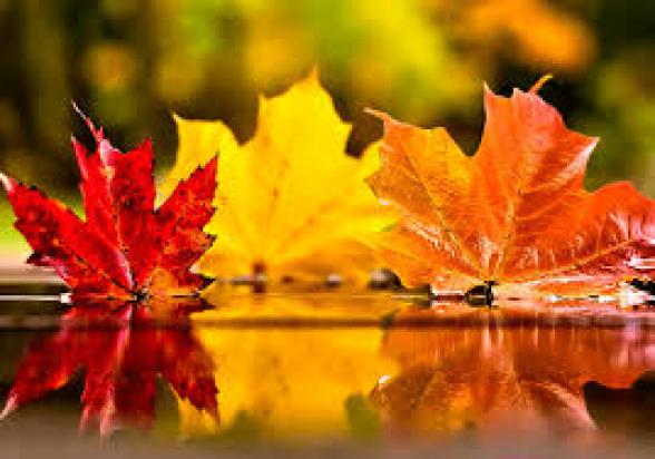 Դեկտեմբերի 7-ի ցերեկը, 8-12 եղանակը էապես չի փոխվի