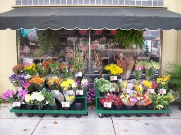 Պարետը թույլատրել է ծաղիկների, բույսերի, կենդանական կերի առևտուրը մասնագիտացված խանութներում