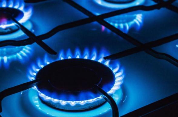 Էներգակիրների շուկաների, նավթի գների անկման և փլուզման պայմաններում ՀՀ ռազմավարական գործընկեր ՌԴ-ից կարող ենք ակնկալել, որ հիմա գազի գնի բարձրացման մասին խոսելու լավագույն ժամանակը չէ․ Նիկոլ Փաշինյան