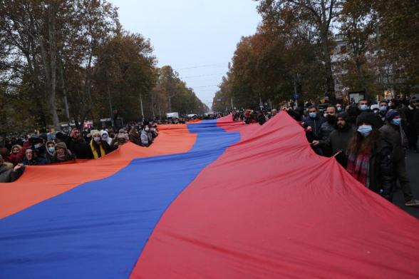 Протестное шествие Движения по спасению Родины (видео)