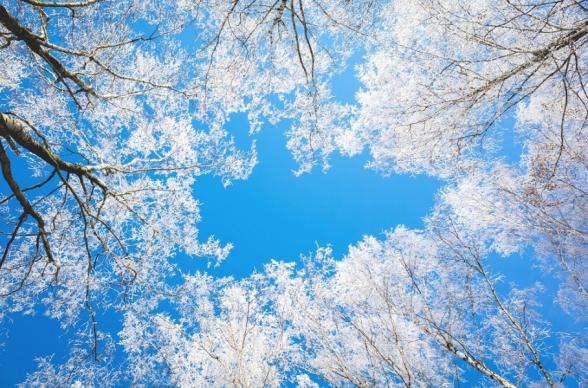 Օդի ջերմաստիճանն ապրիլի 16-21-ը պայմանավորված հարավից տաք օդային հոսանքների ներթափանցմամբ աստիճանաբար կբարձրանա 10-12 աստիճանով