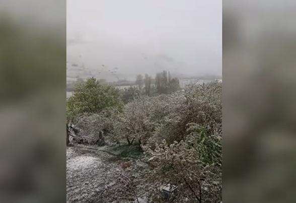 Ճամբարակում ձյուն է տեղացել, ծառերը ծաղկել էին