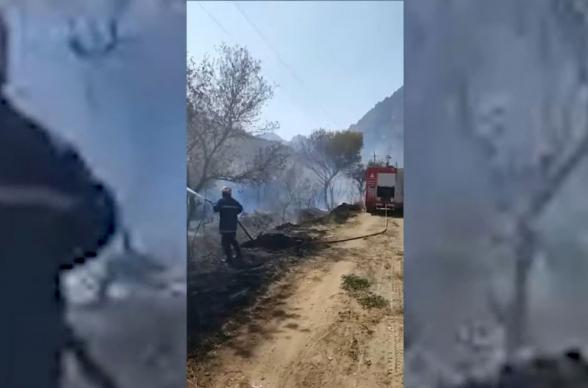 Иранские пожарные помогли борьбе с лесными пожарами в армянском Мегри (видео)