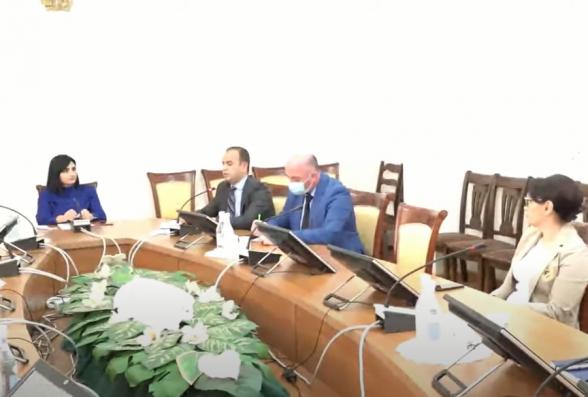 Սփյուռքի հանձնակատարն ու Արցախի նախագահի խորհրդականն ԱԺ-ում են (տեսանյութ)